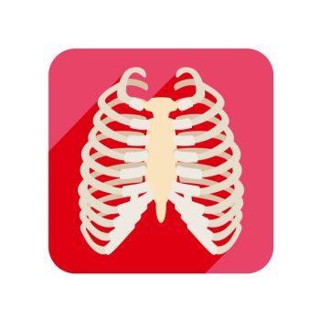 肋骨にひびが入ったときの治療期間はどのくらい?やっぱり安静が必要?