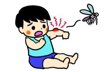 虫刺されによるミミズ腫れのかゆみの対処法・治療法・薬を総まとめ!