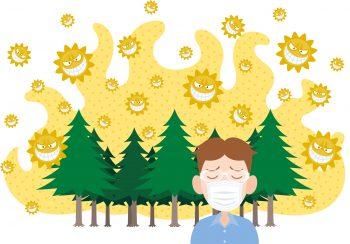 【お役立ち】花粉症対策におススメの飲み物5選!